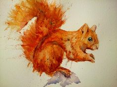Red squirrel.... #art #watercolor #thedailysketch #BigArtBoost #sketchjanuary