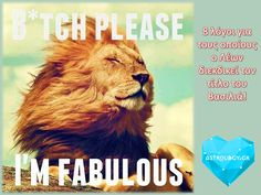 I'm Leo and I'm fabulous That,s all that. Matter,s Leo,s Don,t put up with Shit ♌ Funny Animal Memes, Funny Animal Pictures, Funny Animals, Funniest Animals, Animal Humor, Wild Animals, Lion Pictures, Leo Vixx, Leo Quotes