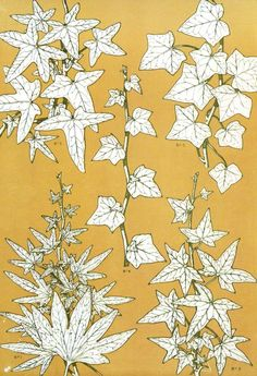 Owen Jones - Ivy Palmata and Common Ivy Leaves from The Grammar of Ornament, Owen Jones, Ivy Plants, Ivy Leaf, Egyptian Art, Green Pattern, Natural Forms, Botanical Illustration, Art Nouveau, Nature