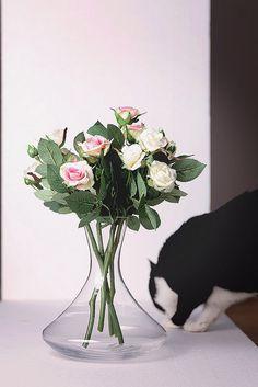 Roses & Brenda Lee
