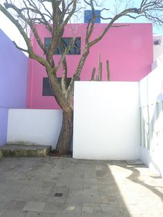 "Casa Gilardi. Architect Luis Barragán. Col. San Miguel Chapultepec, Mexico City. 1975. Photo Steve Silverman this photo featured in the book ""The Architecture of Luis Barragán."" Flickr- Photo Sharing!"