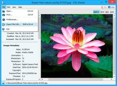 FVL Screenshot - View File Information