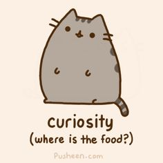 What I think my cat does when I get home. :)   Taken from pusheen.com
