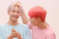 jeonghan | s.coups | seventeen