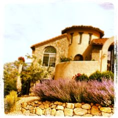 Landscaping using a native plant garden and a low-water garden. #xeriscaping #southwestgarden
