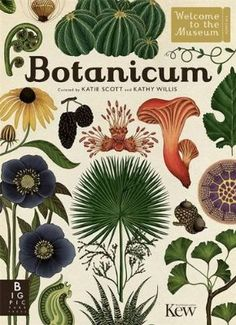 I really like botanical illustrations, and love books like this. ☺️  Botanicum (Welcome to the Museum)