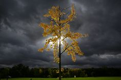 Слънцето едва пробива облаците над Кьолн, Германия.