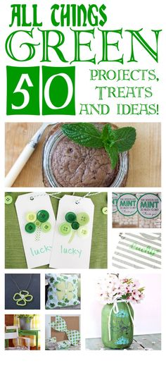All Things Green! 50 Ideas to inspire you for St. Patricks Day, Upcycling, treats and more!
