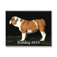 Bulldog 2015 Calendar | Zazzle
