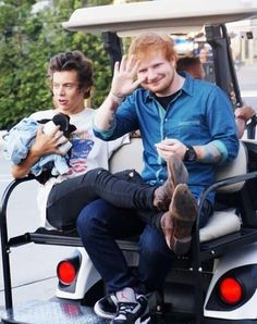 20 Pictures That Prove Harry Styles And Ed Sheeran Have The Best Friendship Ever