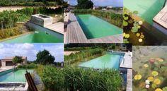 Piscinas ecológicas | La Bioguía