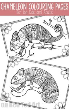 Colouring Pages for Grown Ups - Chameleons - Red Ted Art - Make crafting with kids easy & fun Coloring Pages For Grown Ups, Summer Coloring Pages, Free Coloring Pages, Printable Coloring, Coloring Books, Painted Rug, Fun Songs, Mandala, Bingo Cards
