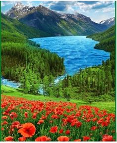 What a beautiful world we are living in. Beautiful Nature Pictures, Amazing Nature, Nature Photos, Pretty Pictures, Beautiful Landscapes, Image Nature, Nature View, What A Beautiful World, Beautiful Places To Visit