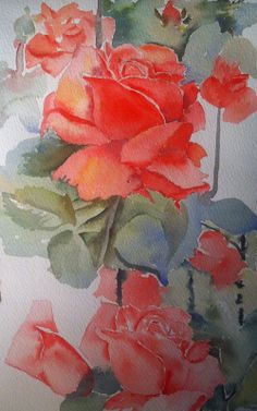 Practising red roses, struggling with the leaves and background more than anything else, watercolours, roses: cadmium red, raw sienna, ultramarine.