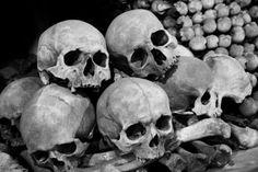 Skull Sleeve Tattoos, Skull Reference, Skull Anatomy, Skull Sketch, Greek Pantheon, Journey To The West, Anatomy Drawing, Vanitas, Skull Design