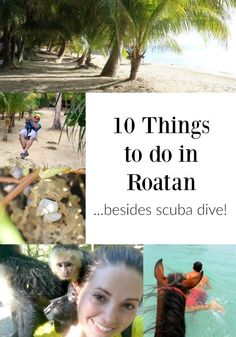 10 Things to Do in Roatan.Besides Scuba Dive- 10 Things to Do in Roatan….Besides Scuba Dive 10 Things to do in Roatan, Honduras…Besides Scuba Dive! Backpacking South America, Backpacking Asia, Cruise Excursions, Cruise Vacation, Dream Vacations, Family Cruise, Vacation Spots, Vacation Ideas, Honduras Travel