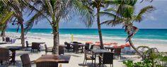 Ziggy Beach Restaurant on the Tulum beach offers authentic Mexican cuisine in a beautiful location. Close to Cabanas Tulum, Beach Tulum and Ziggy Beach Club.