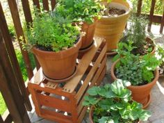Gardening in a small space ... it CAN be done!