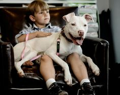 The Problem With People, Not Pit Bulls | TIME -- The president of the American Pit Bull Foundation on why responsible dog ownership matters more than breed