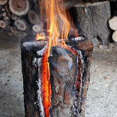 log torch.  a lovely idea to create an instant outdoor fire. These logs have been cut so they stand up straight, and split so they burn vertically.