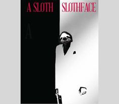 a sloth slothface