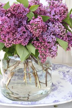 Lilacs - My mother's favorite.  We had gotten my Mom a lilac bush for Mother's Day, and the smell of them always reminds me of her.