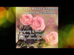 FALANDO DE VIDA!!: Boa tarde com carinho - video de boa tarde - video...