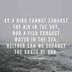 """As a bird cannot exhaust the air in the sky, nor a fish exhaust water in the sea, neither can we exhaust the grace of God. Bible Verses Quotes, Faith Quotes, Me Quotes, Scriptures, Wolf Quotes, Quotes About God, Quotes To Live By, Spiritual Quotes, Positive Quotes"