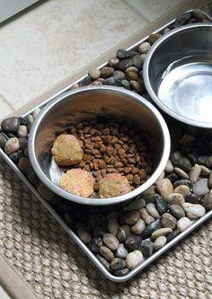 Persistent homemade dog food click