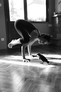 Crow Pose ツ