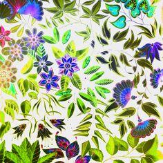 Johanna Bashford My Secret Garden