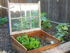 """cold frame"" Loved the website that this came from! I will definitely need to look more into all the different types of gardening."