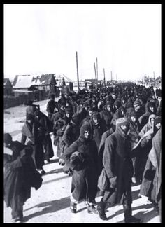 Stalingrad after the battle, 1943. German POWs on their way to preliminary collective points.
