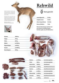 The destructing scheme shows how a life from the living thing deer Das Zerwirkschema zeigt, wie aus dem Lebewesen Reh ein Lebensmittel wird. The pulping scheme shows how deer becomes a food. Food Art, A Food, Food And Drink, Hunting Tips, Deer Hunting, Louisiana Crawfish, Tumblr Food, Roe Deer, Louisiana Recipes