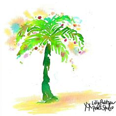 Palm Tree Christmas Lilly 5x5