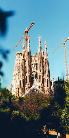 Barcelona is one of those essential European cities that you've just got to visit. Here are the top 10 things you must do in Barcelona! Spanish People, Tens Place, Royal Caribbean Cruise, Tourist Trap, Shore Excursions, Spain And Portugal, Barcelona Spain, Spain Travel, Travel Ideas