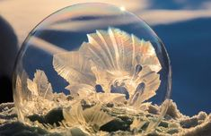 Photographer Hope Carter takes advantage of cold winter days by capturing stunning shots of ice crystals forming on frozen bubbles. Read our exclusive interview with her on My Modern Met. Frozen Bubbles, Soap Bubbles, Bubble Mixture, Ice Bubble, Ice Crystals, Blowing Bubbles, Crystal Ball, Science Nature, New Art