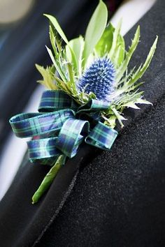 Scottish thistle with tartan ribbon. Chardon écossais et ruban en tartan. Boutonnieres, Thistle Boutonniere, Wedding Boutonniere, Thistle Bouquet, Peonies Bouquet, Scottish Wedding Themes, Scottish Weddings, Wedding Bouquets, Wedding Flowers