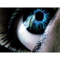 Human eye picture free desktop background - free wallpaper image ❤ liked on Polyvore featuring eyes, makeup, backgrounds, pictures and photos