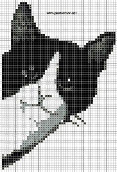 ccd51833ba470746e06ff52a2458166b.jpg (515×759)