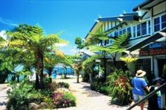 The Lake Barrine Teahouse offers meals and drinks, Queensland. Photo: Tourism Queensland.