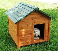 Pallet Dog Crates- 11 DIY Pallet Doghouse Ideas | DIY to Make