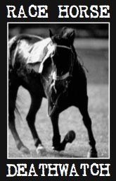 Animal Aid's Race Horse Death Watch was launched during the 2007 Cheltenham Festival. Its purpose is to expose and record every on-course Thoroughbred fatality in Britain. Article, names, numbers.