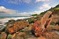 Near the Sea, Rize, TR