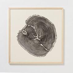 Black Oak Woodcut Print