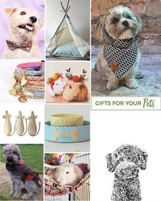 We promise this wasn't just an excuse to show cute pets! But it helps! Another gift list today for you this time for all you pet loving folk #christmas #pets