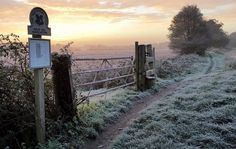 A taste of the frosty mornings we've got to look forward to along the banks for the river Wey.