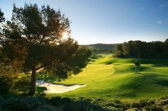 Book your green fees for Colinas Golf & Country Club in Orihuela at the best rates. We sell all courses in Costa Blanca and Alicante since Golf N Stuff, Beautiful Landscape Images, Golf Holidays, Golf Clubs For Sale, Golf Day, Golf Tour, Golf Player, Golf Tips For Beginners, Golf Lessons