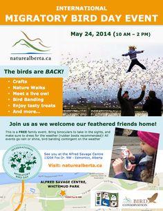 Evento de Día Internacional de las Aves Migratorias organizado por Natura Alberta en Alfred Savage Centre, Whitemud Park.  International Migratory Bird Day event hosted by Nature Alberta in Alfred Savage Centre, Whitemud Park.  #BirdDay