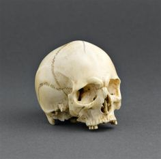 Ivory skull, made in France in the 17th century (source).